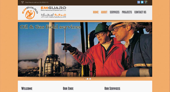 Website Design Portfolio - Emguard