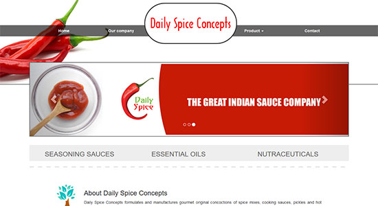 Website Design Portfolio - Daily Spice Concepts